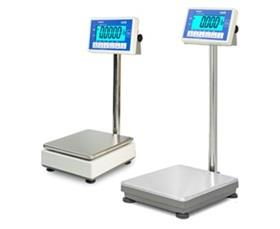 ULTRA HIGH RESOLUTION PRECISION WEIGHING SCALES